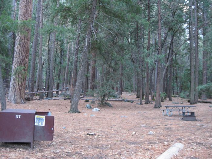 CampsiteCampsite 177