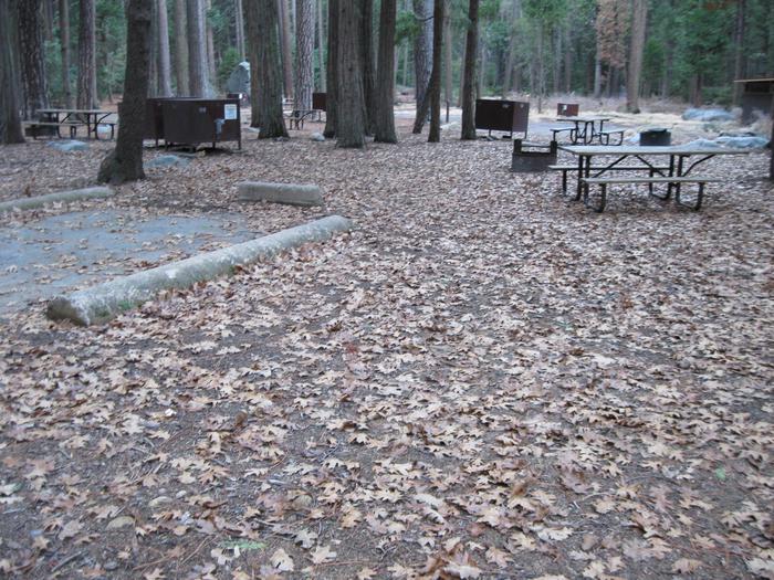 CampsiteCampsite 180