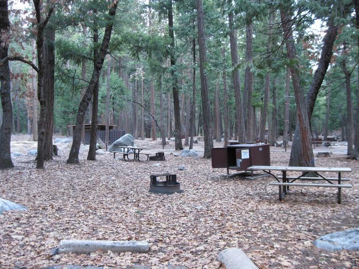 CampsiteCampsite 181