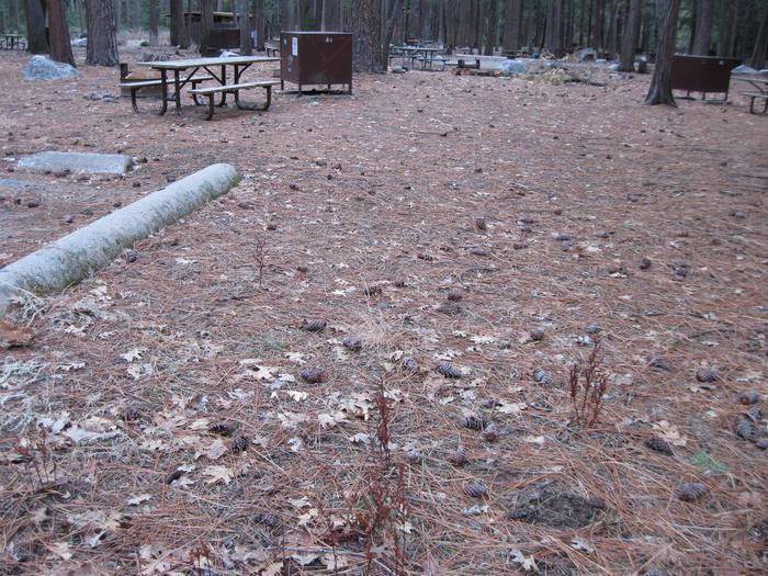 CampsiteCampsite 184