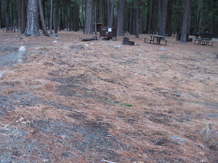 CampsiteCampsite 185
