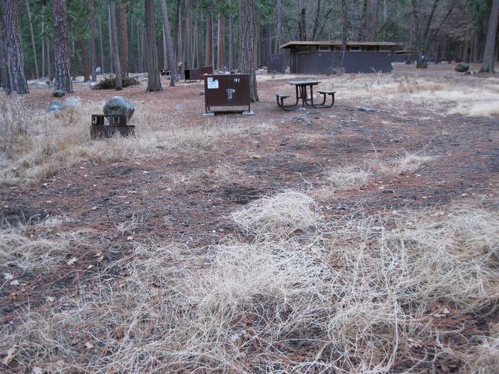 CampsiteCampsite 187