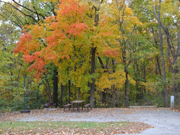 Fall at Lithia Springs
