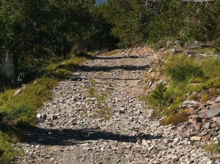 Access road to lookout