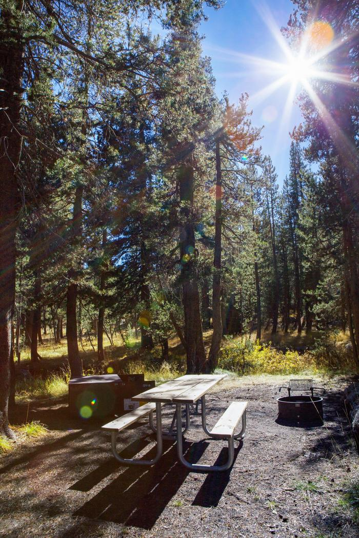 Preview photo of Porcupine Flat Campground