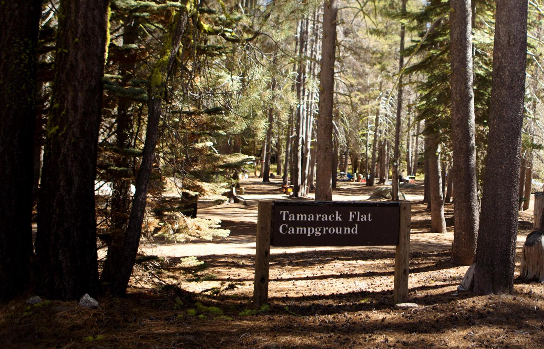 Tamarack Flat CampgroundThe entrance to Tamarack Flat Campground