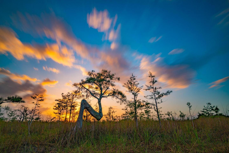 Preview photo of Everglades National Park