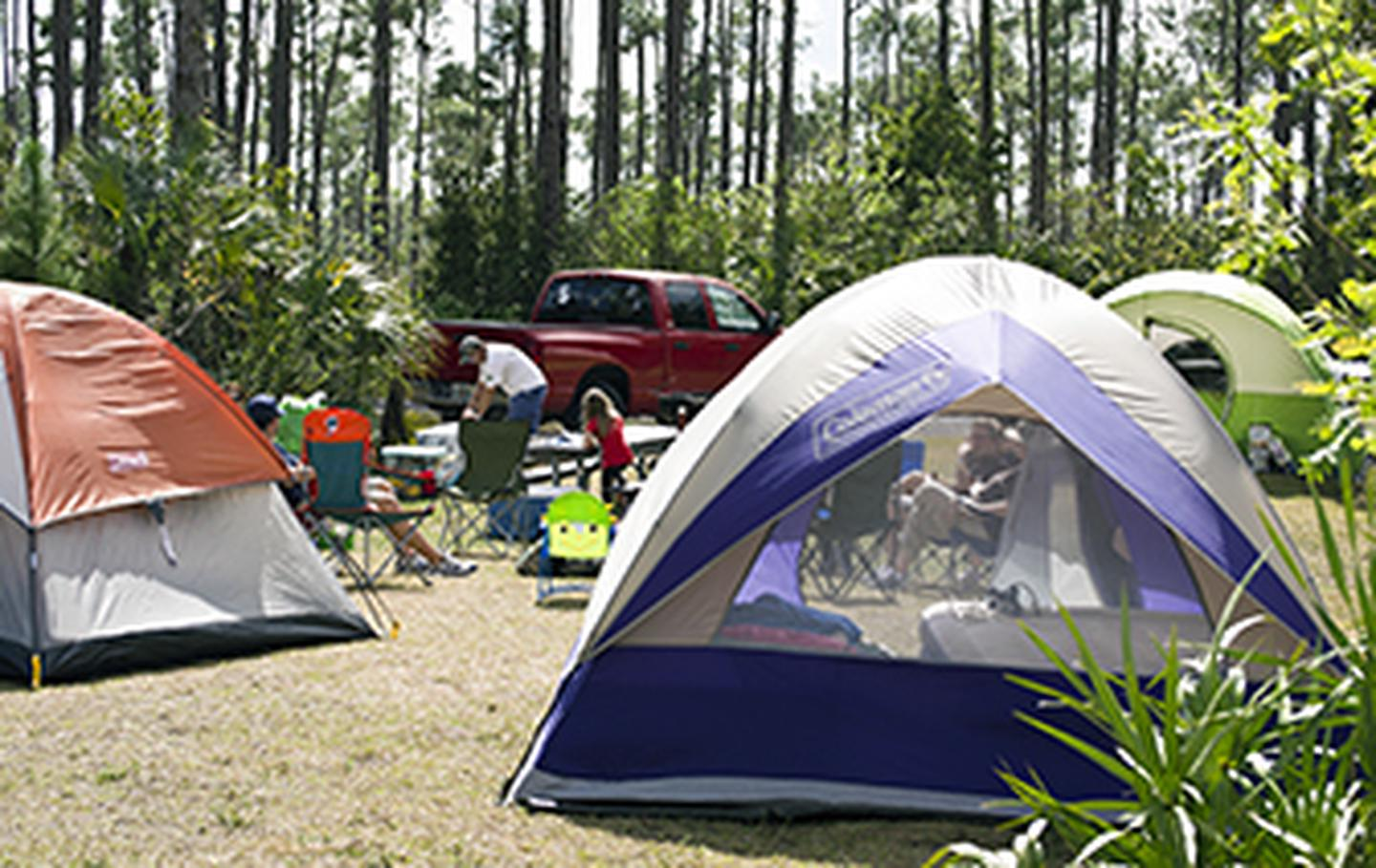 Camping at Long Pine KeyLong Pine Key Campground is open seasonally from November through May. It is located seven miles (11 km) from the main entrance, just off the main road.