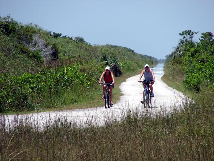 Shark Valley Tram and Bicycle RoadBiking is a great way to experience the quiet beauty of the Everglades.