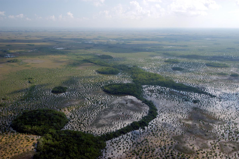 Transition from Sawgrass to Florida BayAn aerial view of the landscape transition from Sawgrass to Florida Bay.