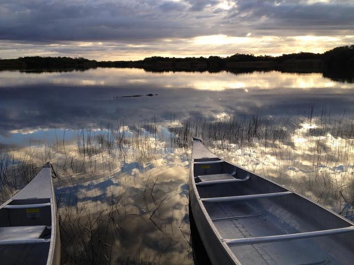Nine Mile PondA meeting ground of marsh and mangrove environments. You may see alligators, wading birds, turtles, and fish.
