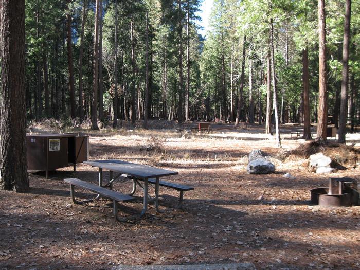 CampsiteCampsite 191