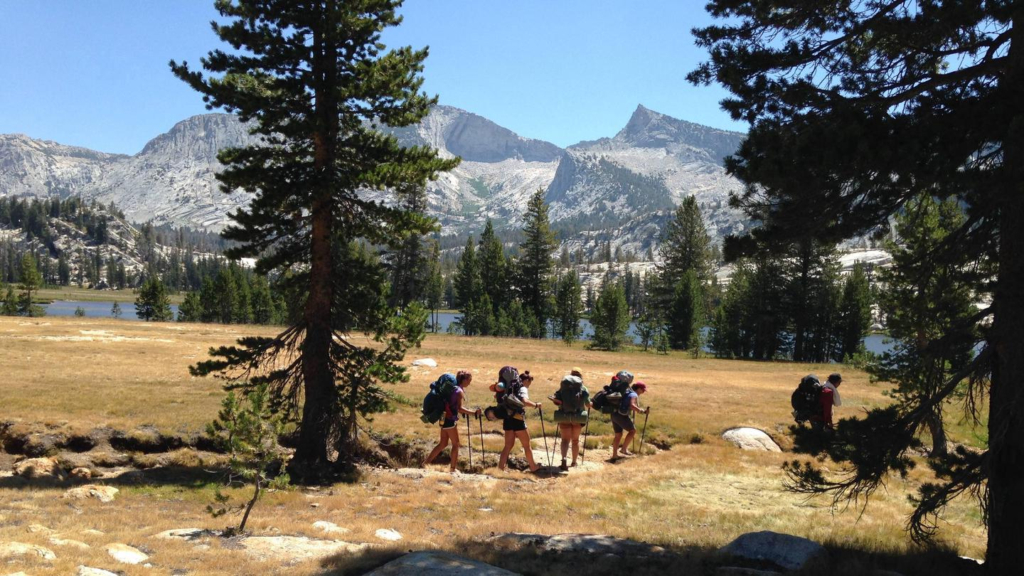 A small group of hikers in the Yosemite back country.