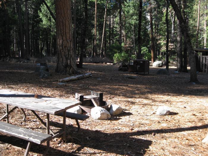 CampsiteCampsite 195