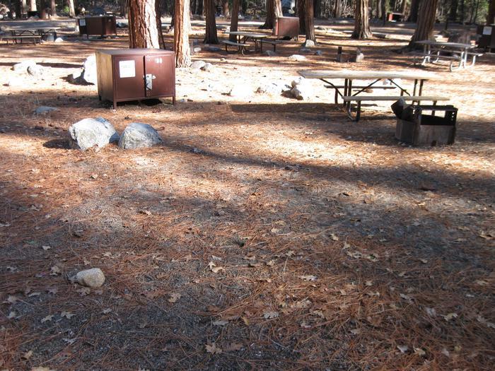 CampsiteCampsite 198