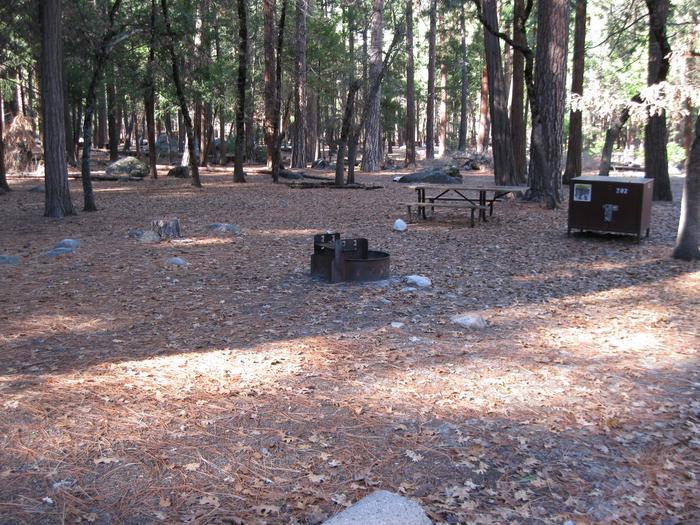 CampsiteCampsite 202