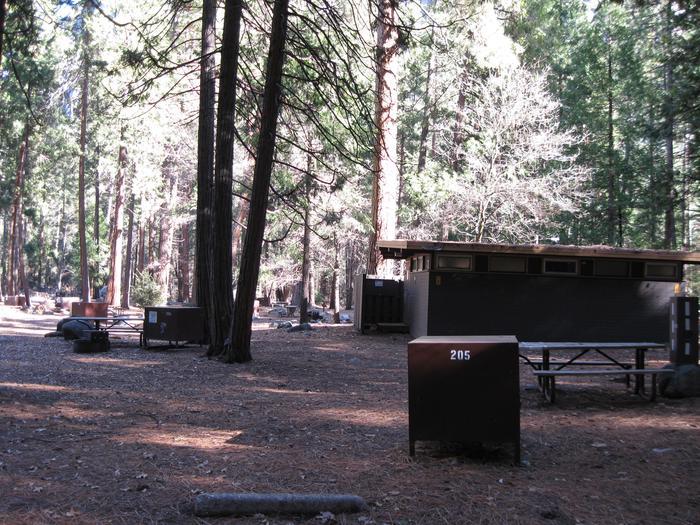 CampsiteCampsite 205