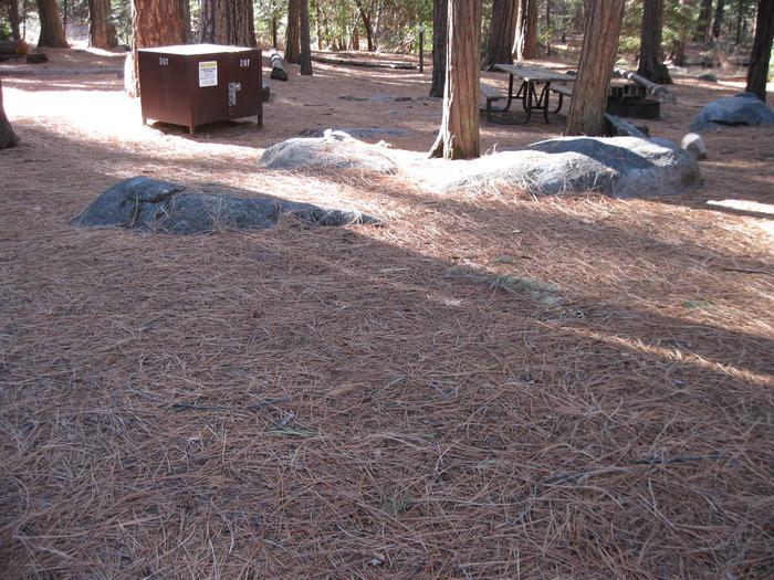 CampsiteCampsite 207