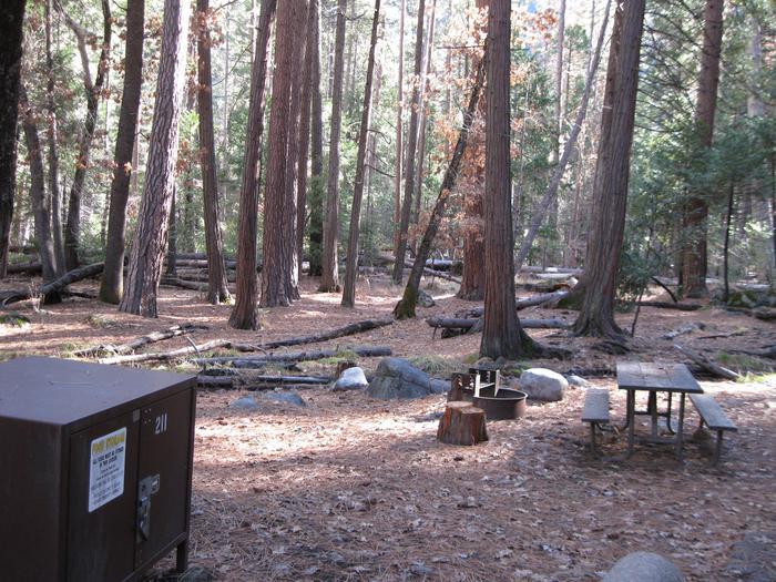 CampsiteCampsite 211