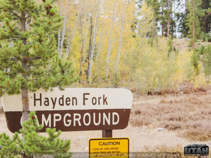 Preview photo of Hayden Fork Campground
