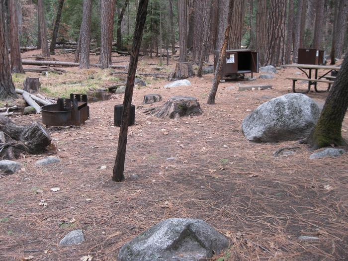 CampsiteCampsite 214