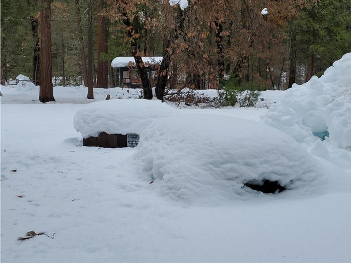 Upper Pines covered in snowUpper Pines sites covered in snow.