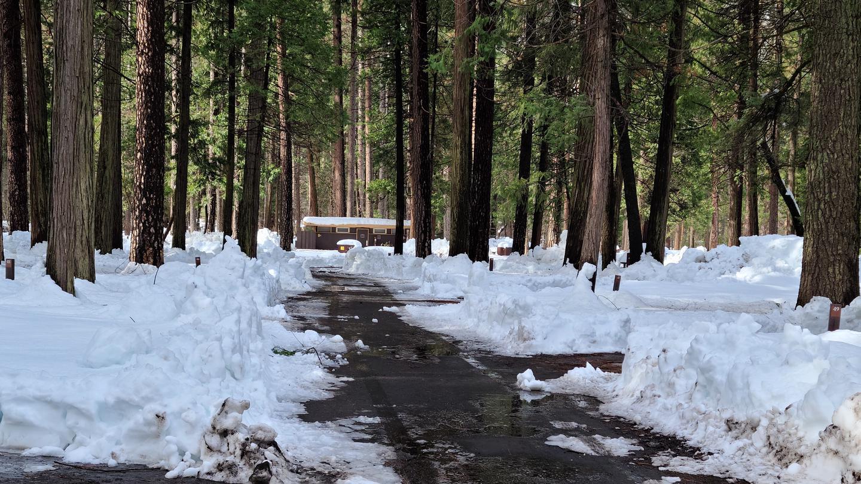 Upper Pines snow-plowed road