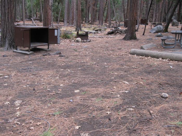 CampsiteCampsite 216