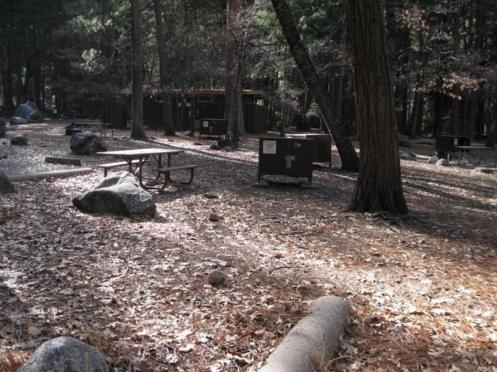 CampsiteCampsite 219