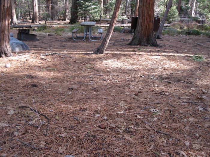 CampsiteCampsite 220