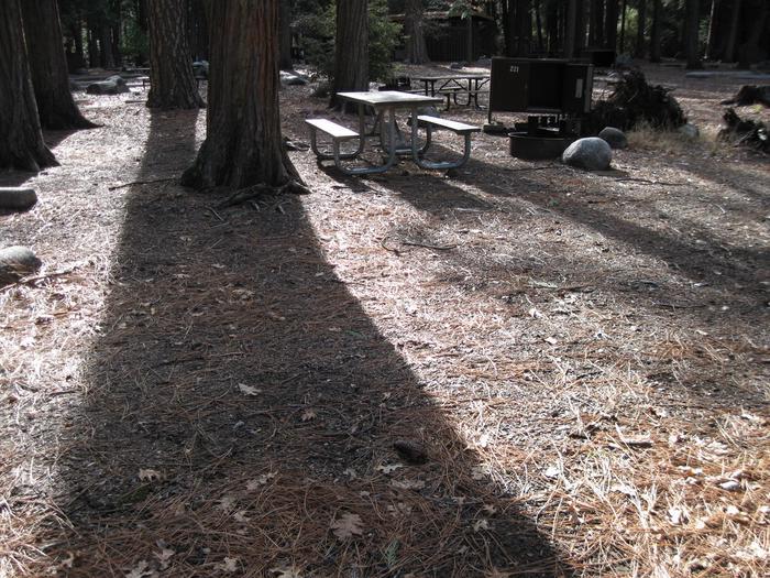 CampsiteCampsite 221