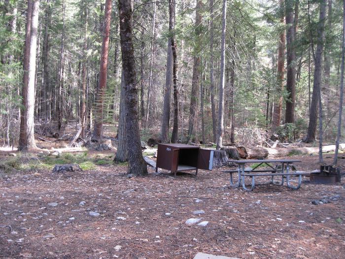 CampsiteCampsite 224