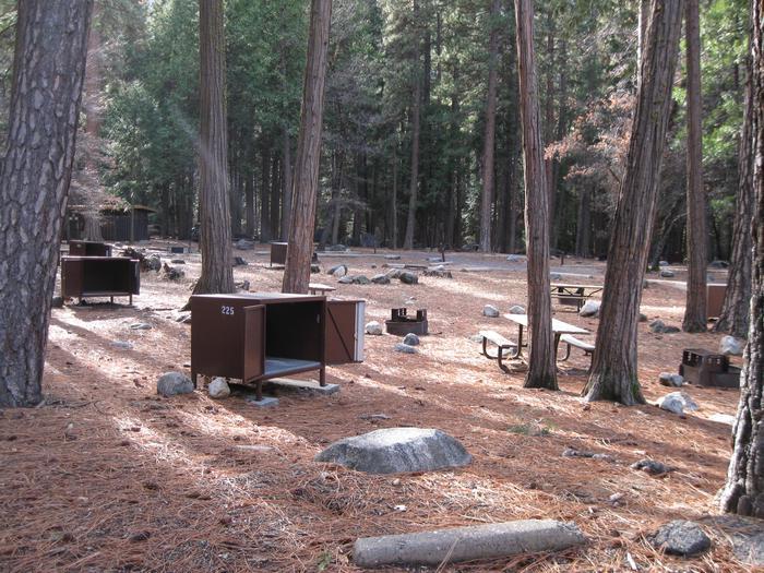 CampsiteCampsite 225