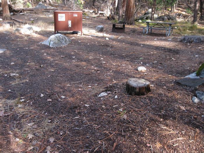 CampsiteCampsite 226