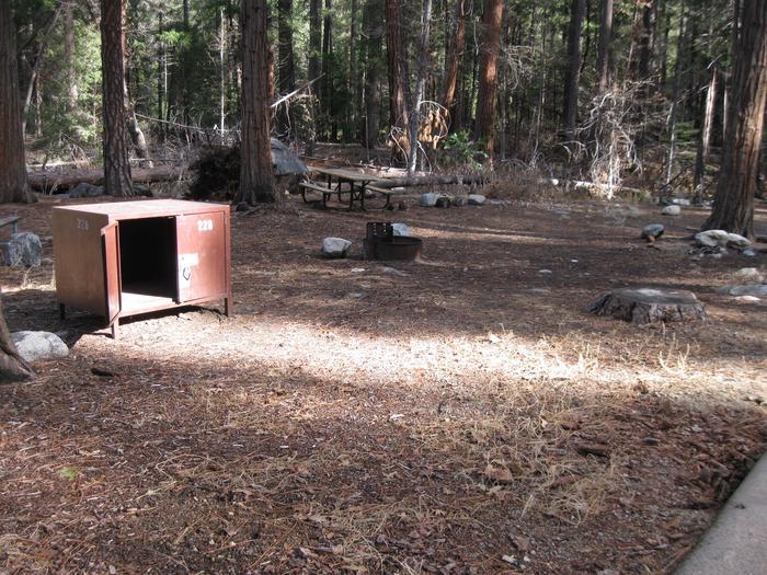 CampsiteCampsite 228