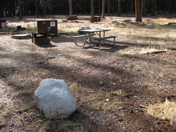 CampsiteCampsite 231