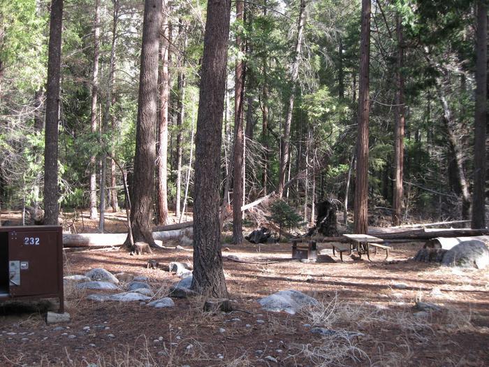 CampsiteCampsite 232