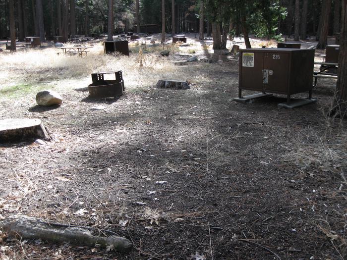 CampsiteCampsite 235