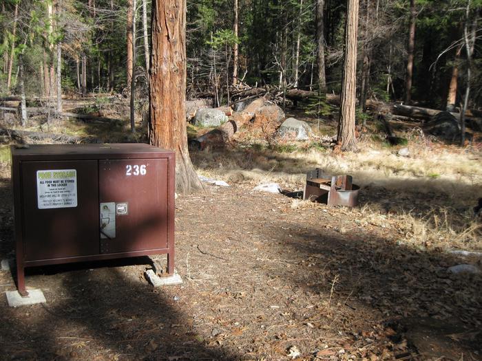 CampsiteCampsite 236