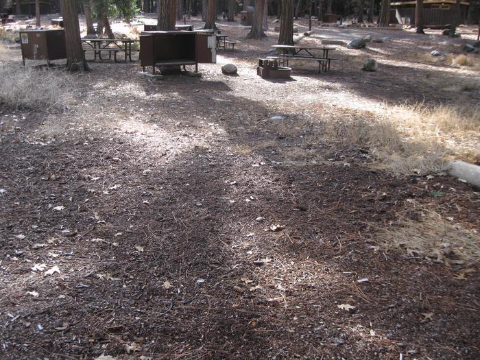 CampsiteCampsite 237