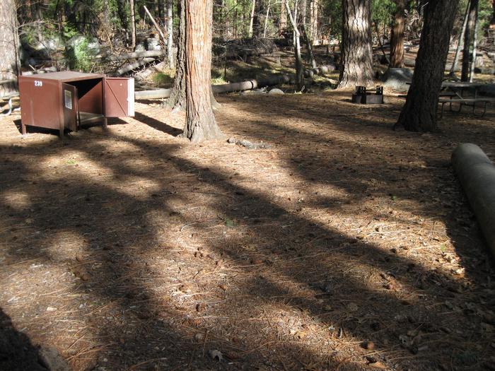 CampsiteCampsite 239