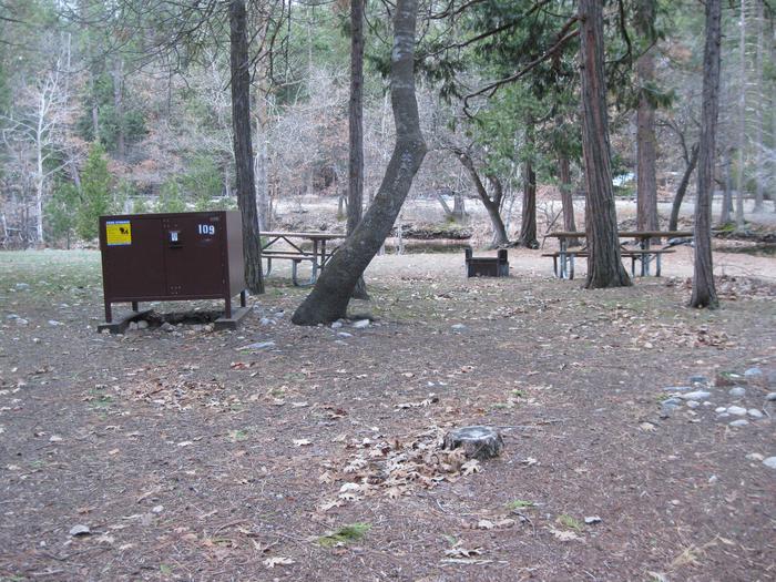 CampsiteCampsite 109