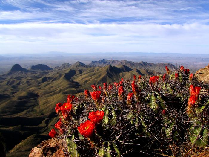 View from the South Rim of the ChisosBig Bend is a place of expansive views