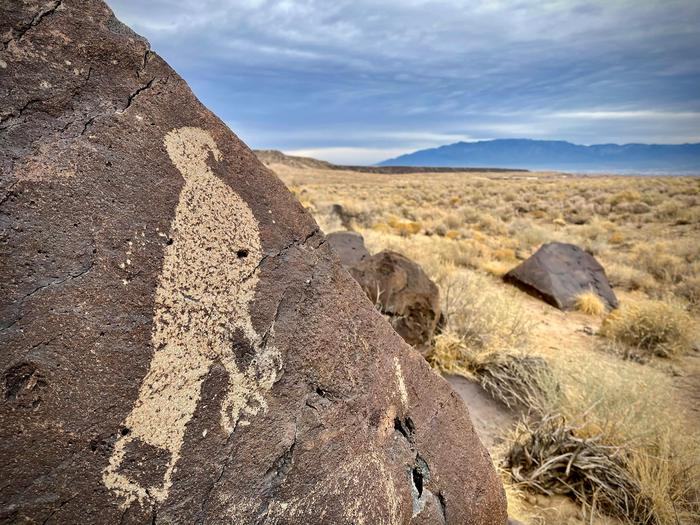 Hawk Petroglyph at Mesa PrietaA petroglyph of a hawk at Mesa Prieta. It can be visited from the South Point trailhead.