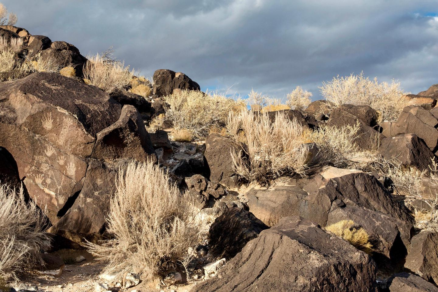 Hand Print PetroglyphsHand prints and other petroglyphs on boulders at Piedras Marcadas.