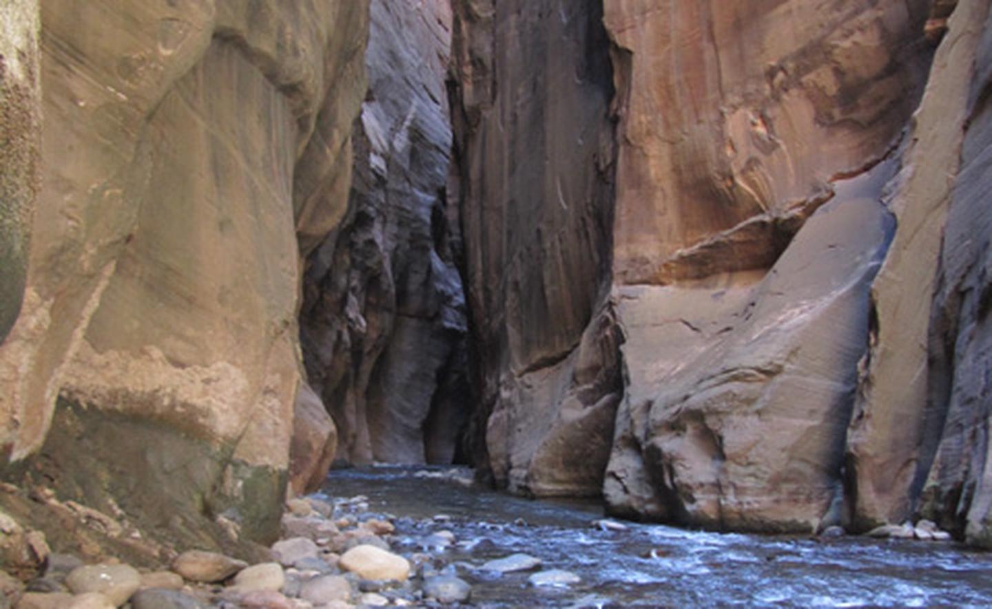 The Zion NarrowsThe Zion Narrows is a challenging wilderness experience.