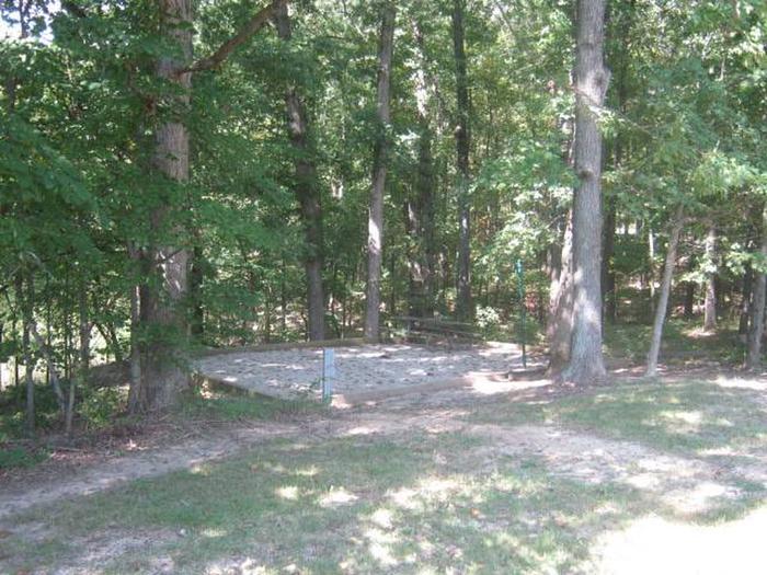 Site 41