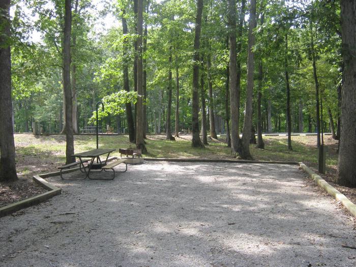 Site 74