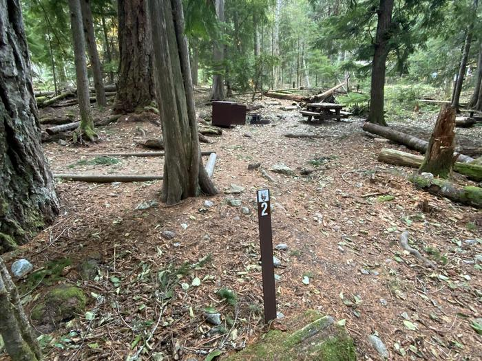 Tent pad, bear box, picnic table, and campfire ring set between trees.Colonial Creek North campsite number 2. A tent pad, bear box, picnic table, and campfire ring  set in the woods.