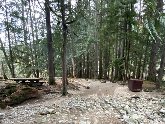 A picnic table, tent pad, campfire ring, and bear box in a forest.View of the campsite.